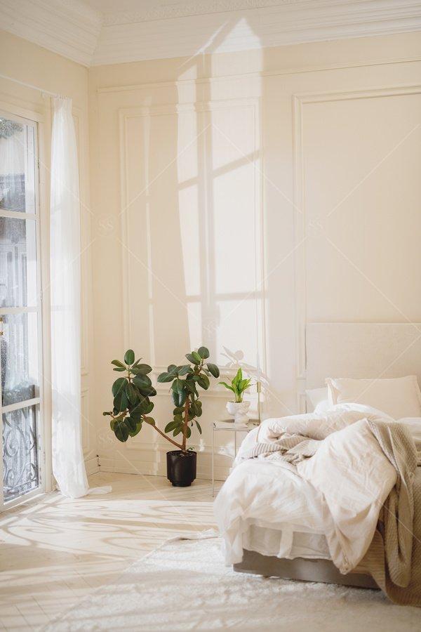 serene modern bedroom