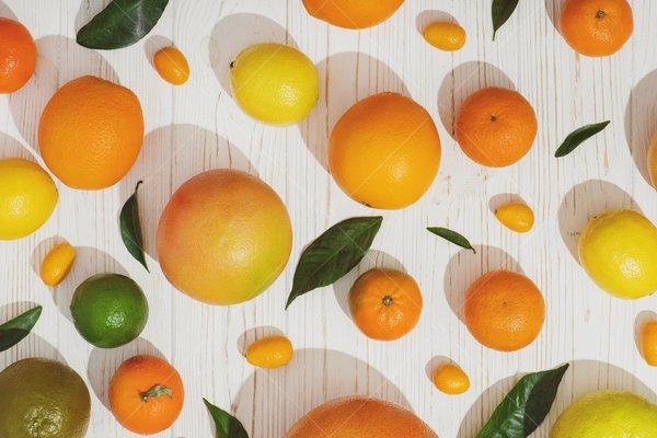 citrus fruit still life stock photo
