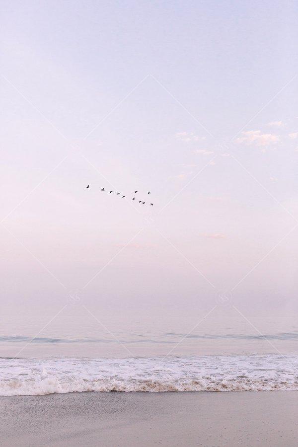 beach ocean stock photo