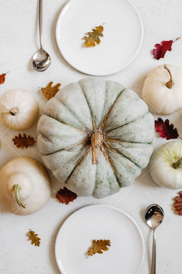 fall decor table setting with pumpkins and gourds stock photo