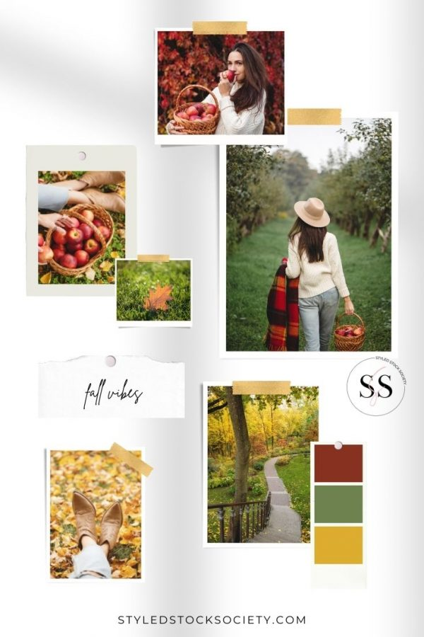 Fall Vibes Blog Mood Board
