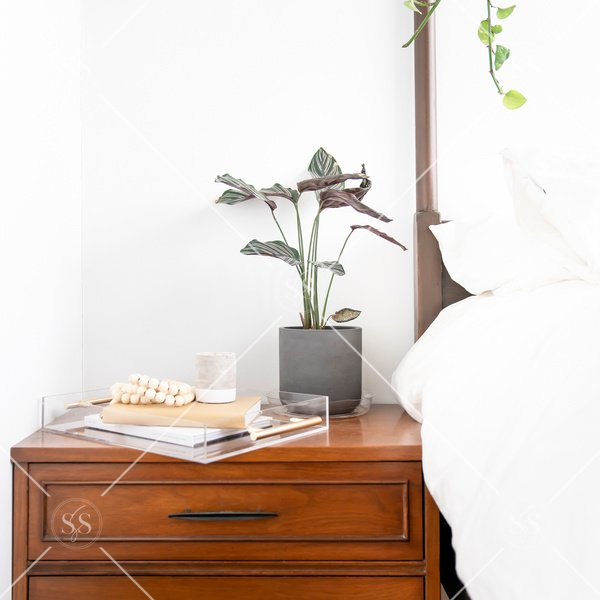 Bedside table with plant and chic tray