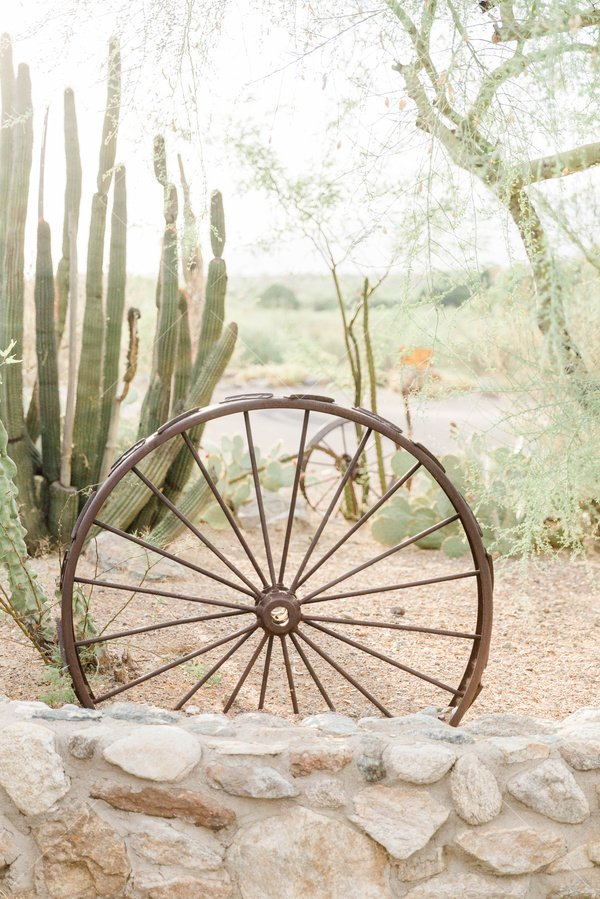 antique wagon wheel standing against a background of cacti