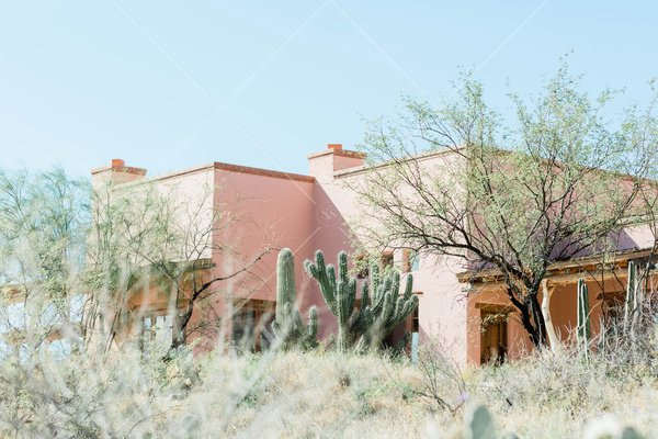 landscape desert photo with cacti and building