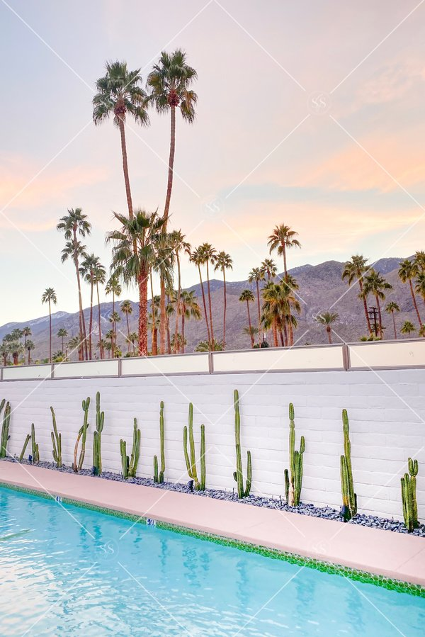 Poolside sunset in Palm Springs
