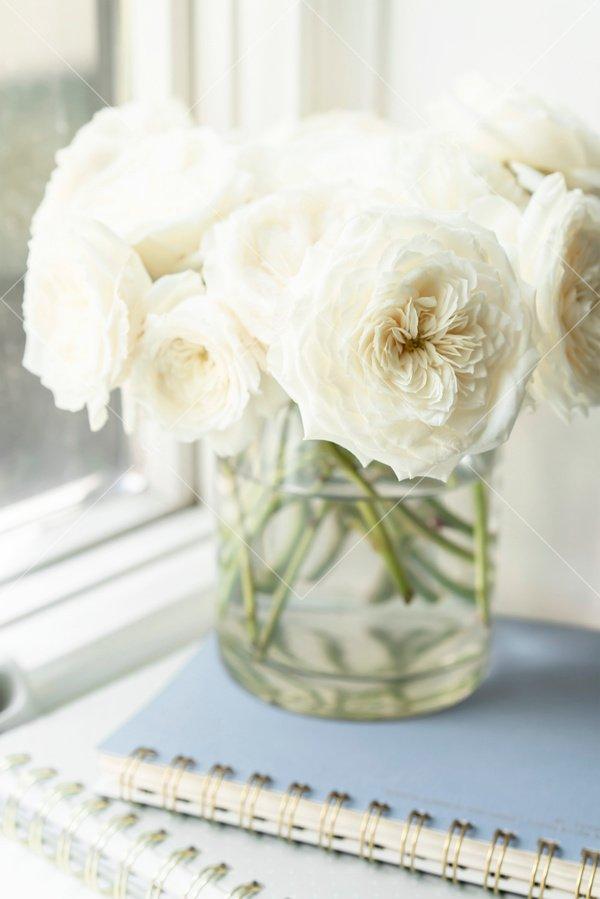 vase of white flowers on notebooks